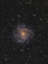 IC 342