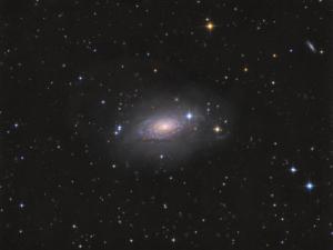 M 63 - Sonnenblumengalaxie