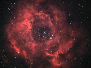 NGC 2237 (2005/12)