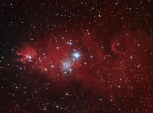 NGC 2264 (2008/02)