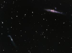 NGC 4631 + NGC 4656 (2006/03)